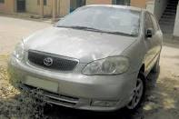 Gold Color Corolla H5 For Sale - Gwalior