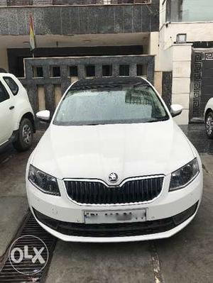 Skoda Octavia  elegance AT