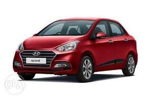 Hyundai Xcent petrol  Kms  year