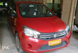 Maruti Suzuki Celerio VXI AMT petrol  Kms  year