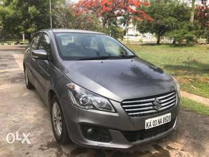 Maruti Ciaz Automatic Zeta for Sale